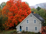 Home Sweet Home: Thetford, Vermont